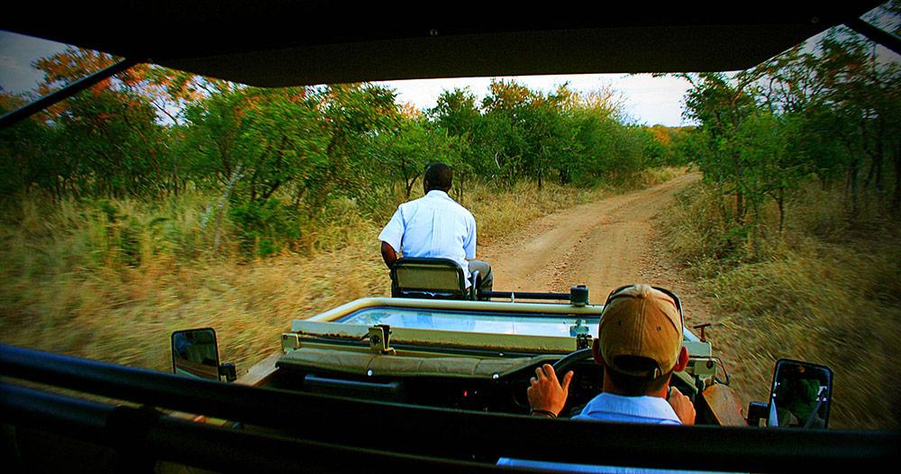 safari_manyeleti